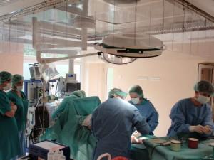 Pierwszy przeszczep